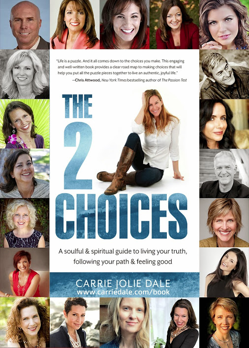 The 2 Choices book