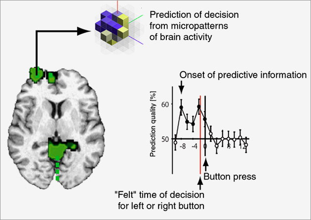 brain decision Wired article