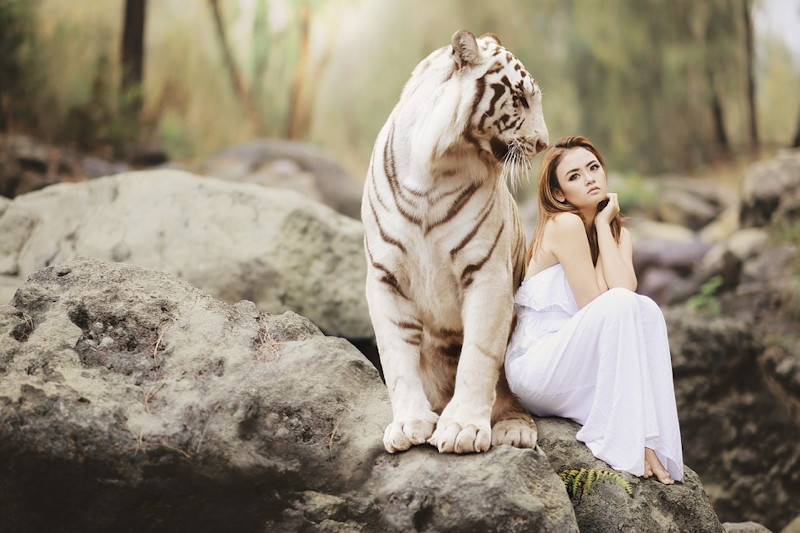 Bengal Tiger and young woman by Sarah Richter